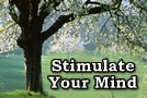 Stimulate Your Mind 